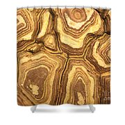 Nature's Interesting Patterns Shower Curtain