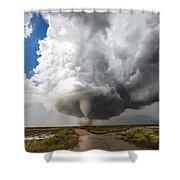 Nature's Irony Shower Curtain