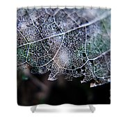 Nature's Lace Shower Curtain