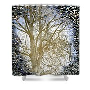 Natures Looking Glass 4 Shower Curtain