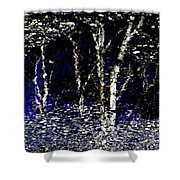 Natures Looking Glass 5 Shower Curtain