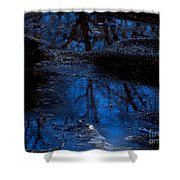 Natures Looking Glass Shower Curtain