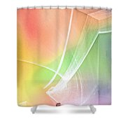 Nature's New Art Over My Head New Years Morning 2014 Shower Curtain