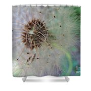 Natures New Life 1 Shower Curtain