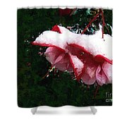 Nature's Ornament Shower Curtain