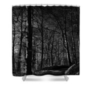 Nature's Path Shower Curtain