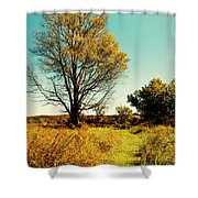 Nature's Pathway Shower Curtain