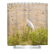Nature's Picture Shower Curtain