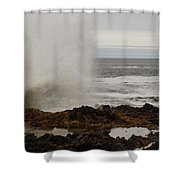 Nature's Power Shower Curtain