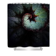 Nature's Rex Begonia Shower Curtain