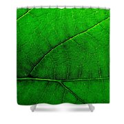 Natures Road Map Shower Curtain