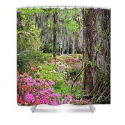 Natures Scenery  Shower Curtain