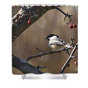 Natures Small Wonders Shower Curtain