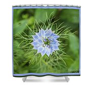 Natures Star Shower Curtain