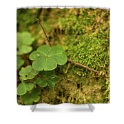 Natures Tiny Work Shower Curtain