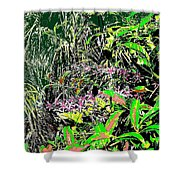 Nature's Way Shower Curtain by Eikoni Images