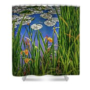 Nature's Window #h5 Shower Curtain by Leif Sohlman