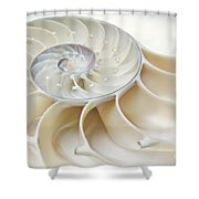 Nautilus 2by3 Shower Curtain
