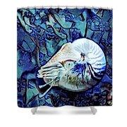 Nautilus Blue Shower Curtain