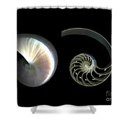 Nautilus Deconstructed Shower Curtain