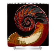 Nautilus Shower Curtain by Granger