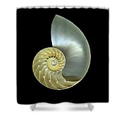 Nautilus Nr.1 Shower Curtain