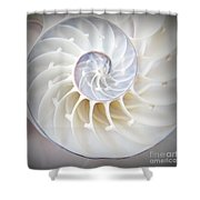 Nautilus Square Shower Curtain