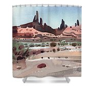 Navajoland Shower Curtain