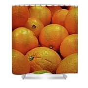Navel Oranges Shower Curtain