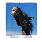 Nay Nay Shower Curtain