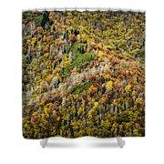 Nc Fall Foliage 0543 Shower Curtain