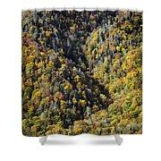 Nc Fall Foliage 0544 Shower Curtain