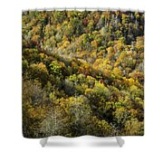 Nc Fall Foliage 0545 Shower Curtain