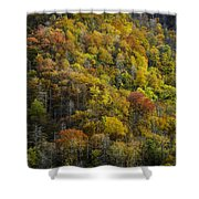 Nc Fall Foliage 0559 Shower Curtain