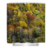 Nc Fall Foliage 0561 Shower Curtain