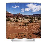 Near Goose Neck Shower Curtain by Chad Dutson