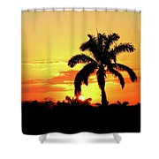 Near Perfect Palm Tree Shower Curtain
