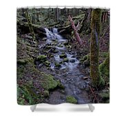 Near The End Of A Journey  Shower Curtain