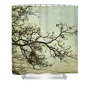 Nearly Bare Branches Shower Curtain