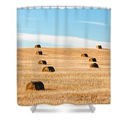 Nearly Covered Shower Curtain