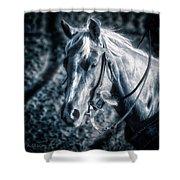 Nebraska Rodeo Roping Horse... Shower Curtain