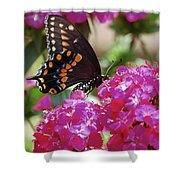 Nectar Of Pink Passion Shower Curtain