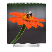 Nectar Of The Gods Shower Curtain
