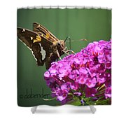 Nectaring Moth Shower Curtain