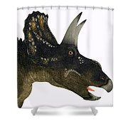 Nedoceratops Dinosaur Head Shower Curtain