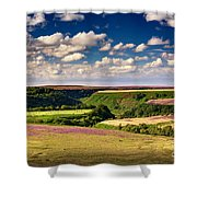 Needle Point From Saltersgate Shower Curtain
