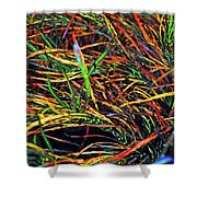 Needles Of Color Shower Curtain