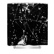 Negative K Mesons, Bubble Chamber Event Shower Curtain