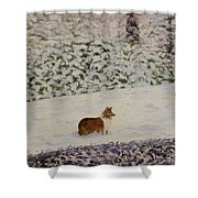 Nelleke Shower Curtain