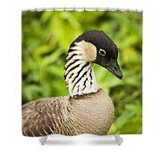 Nene Goose II Shower Curtain